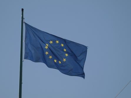 IZA-Chef Zimmermann fordert gemeinsamen EU-Arbeitsmarkt