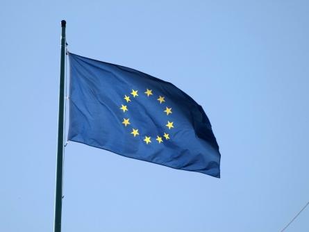 Ashton beruft EU-Außenministertreffen zum Irak ein