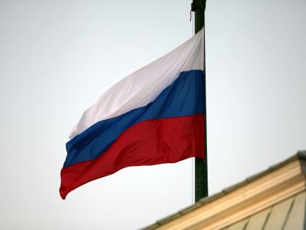Experte sieht russisches Importverbot für West-Autos gelassen