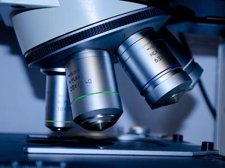 Biotechnologie Unternehmen sphingotec expandiert in die USA