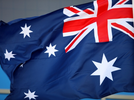 Australien erhöht Terrorwarnstufe