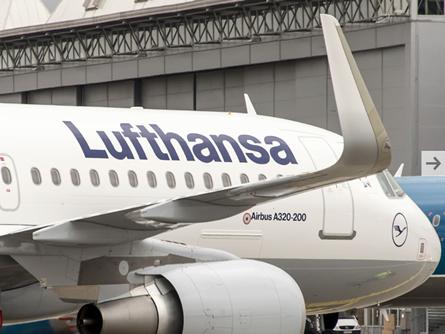 Im Rudel, Kommentar zur Lufthansa von Lisa Schmelzer