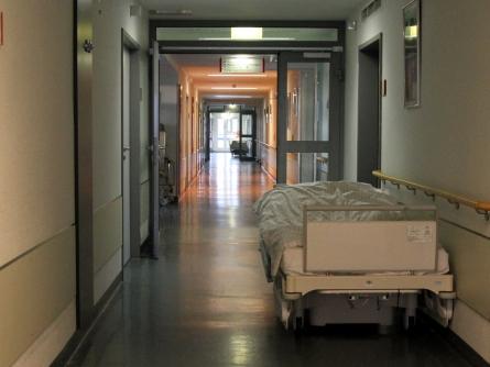 Fachkräftemangel in der Pflege: Verband wirft GroKo Untätigkeit vor