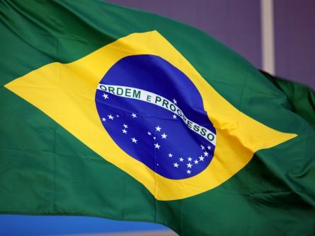 BDI will Brasilien bei Wirtschaftsmodernisierung helfen