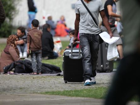 "Debatte um ""Blue Card"" für Flüchtlinge"