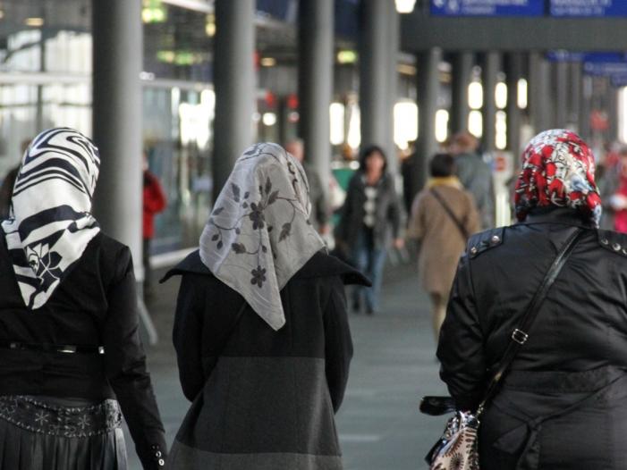 Österreichs Bundespräsident verteidigt Kopftuch-Äußerung